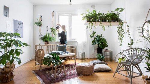 Decoração Urban Jungle